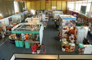 2011-06-11 Pünkösdi Vásár
