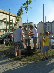 2011-06-21 Gerilla-faültetés a Bástya-parkolóban