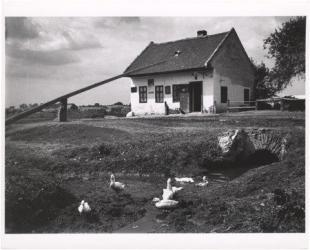 A gátõr háza (Az esztergomi vámnál). Esztergom, 1917. szeptember 3.