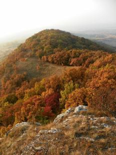 2011-11-02 Ősz a Strázsa-hegyen