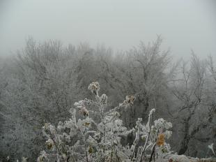 2011-11-20 Dobogókőn már tél van