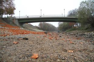 2011-12-02 Csontszáraz a Kis-Duna medre