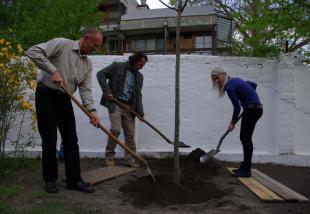 2012-04-18 Emlékfa ültetése a százéves strandfürdőben