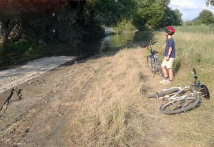 Jön a Duna, a biciklis út víz alatt a szőlőskerteknél (fotó: Érdy Ágnes)