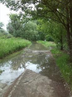 A Duna állása ma reggel a Csenke patak után. Fotó: Geletey Balázs