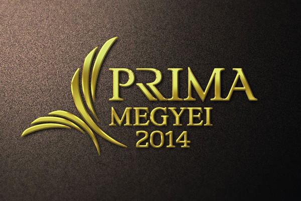 Esztergomi és dorogi jelölt is van az idei Megyei Príma Díjra