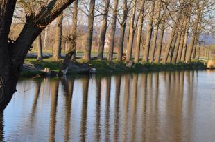Bottyán-tó