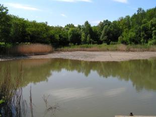 Fürdő-tó