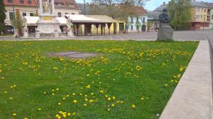 2016-04-07 Virágos Esztergom