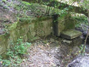 A Hideg forrás az eredeti helyén 2009. augusztus 1-én